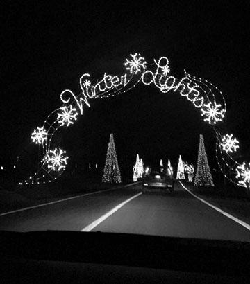 Winter Lights turn park into winter wonderland