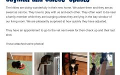 Animals on the Lost Dog and Cat Rescue website are able to be fostered.
