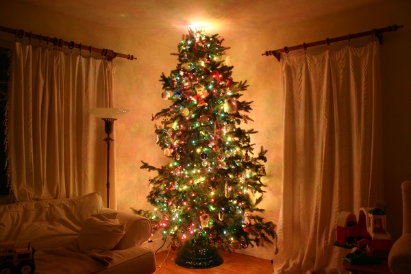 A family's Christmas tree is put up in the corner of the room as it awaits the time when presents are put under it.
