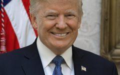 President Donald J. Trump smiles for an official portrait.