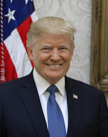 President Donald J. Trump smiles for an official portrait.