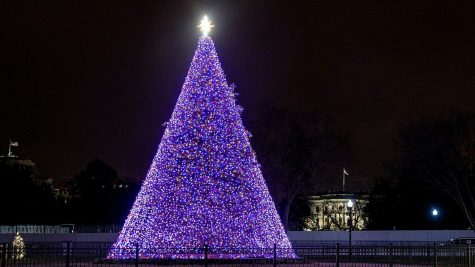 The 98th annual National Tree Lighting ceremony took place on Dec 3. and is on display until Jan. 1, 2021.