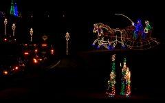 Illuminated light displays at the Winter Lights Festival in Seneca Creek State Park.