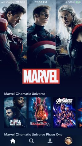 Disney Plus MARVEL Home Screen
